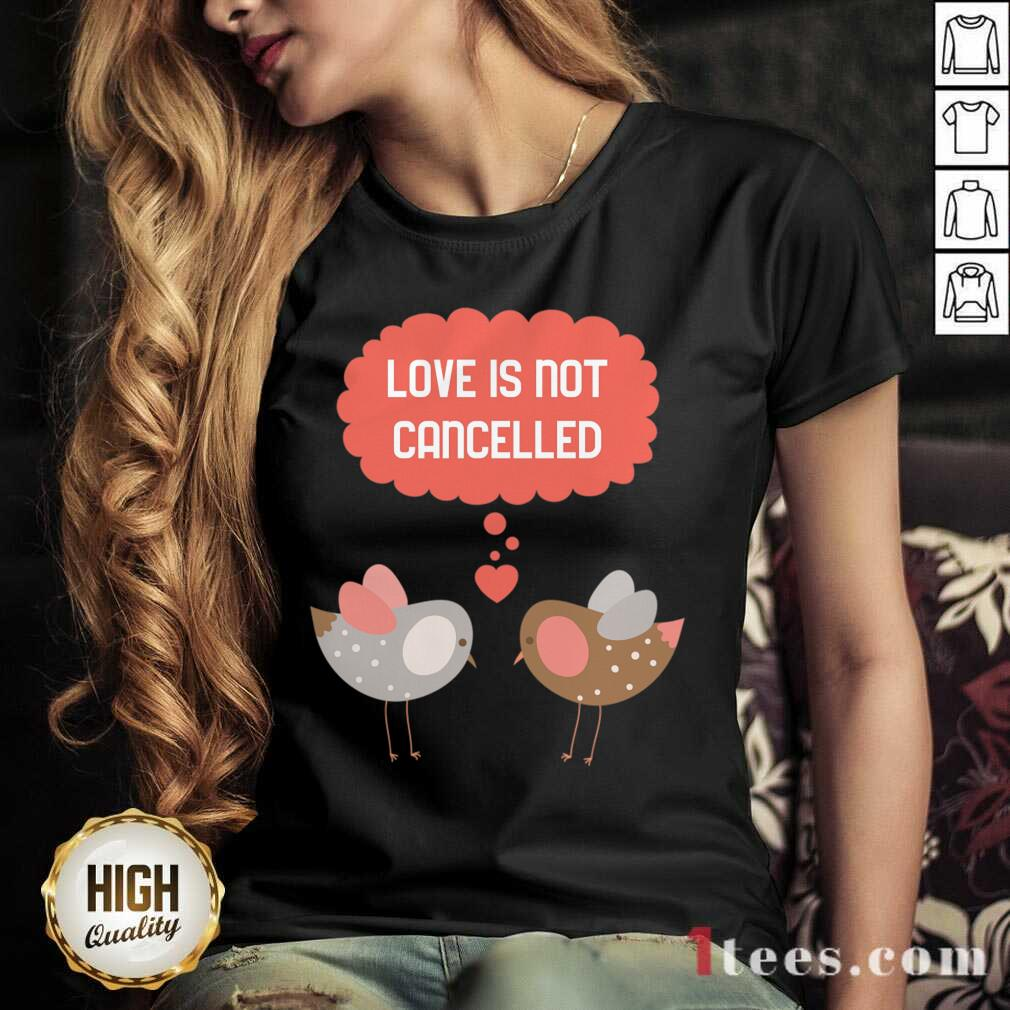 Love Is Not Cancelled Graphic V-neck- Design By 1Tees.com