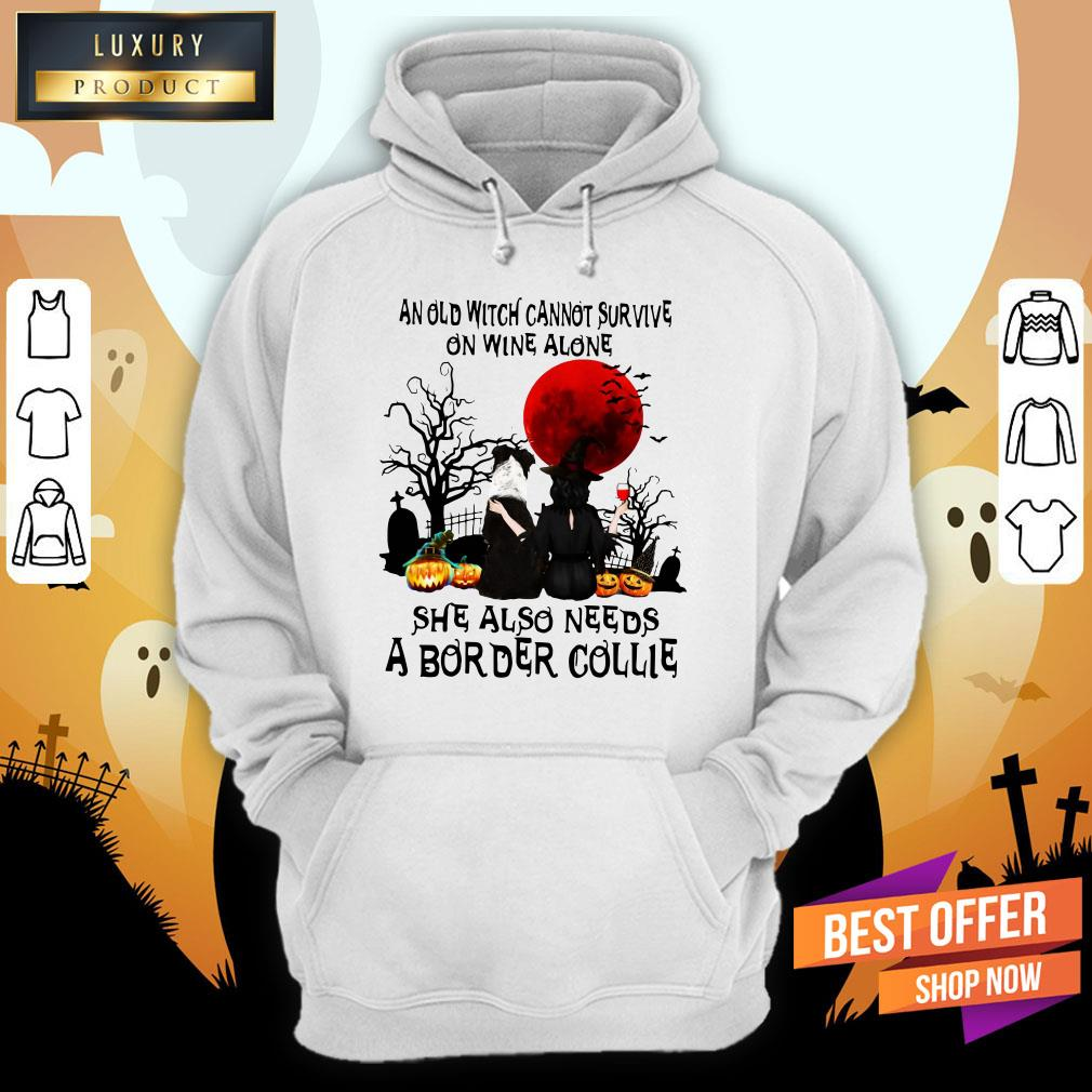 An Old Witch Cannot Survive On Wine Alone She Also Needs A Border Collie Moon Halloween Hoodie