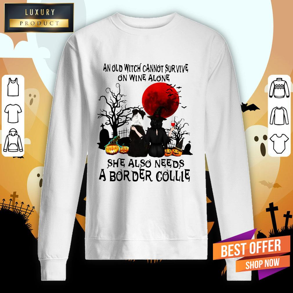 An Old Witch Cannot Survive On Wine Alone She Also Needs A Border Collie Moon Halloween Sweatshirt