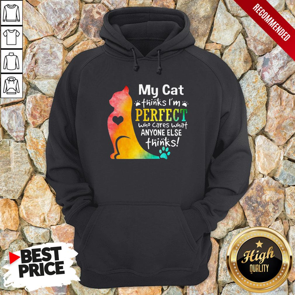 My Cat Thinks I'm Perfect Who Cares What Anyone Else Thinks Hoodie