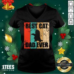 Best Cat Dad Ever Vintage V-neck- Design By 1Tees.com
