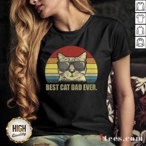 Best Cat Dad Ever Sunset V-neck- Design By 1Tees.com