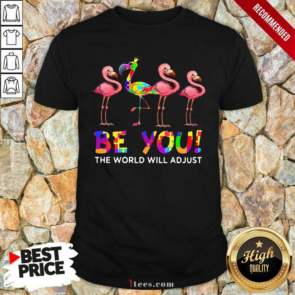 Flamingo Be You The World Will Adjust Shirt