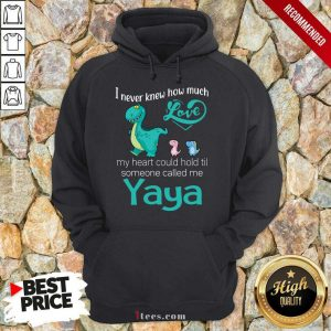 Awesome I Never Knew How Much Love Yaya SAwesome I Never Knew How Much Love Yaya Saurus Hoodieaurus Hoodie
