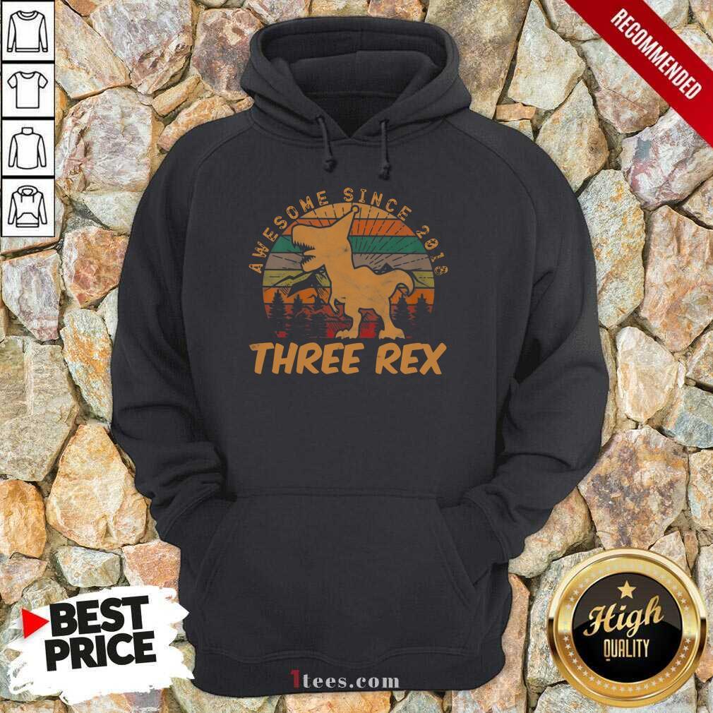 Awesome Since 2018 Three Rex Vintage Hoodie