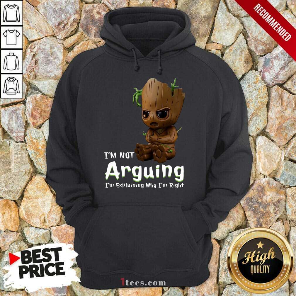 I'm Not Arguing Groot Hoodie