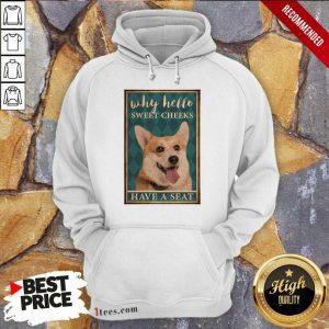 Why Hello Sweet Cheeks Coggy Dog Hoodie