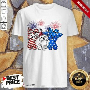 Yorkshire Terrier American Flag And Firework Shirt