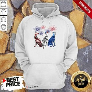 Whippet American Flag Colors Hoodie