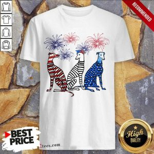 Whippet American Flag Colors Shirt